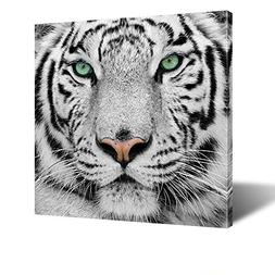 Kreative Arts - White Tiger Canvas Art Print Large Animal Wa