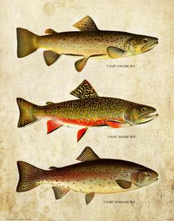 Vintage Trout Fly Fishing Patent Art Print Lures Office Lodg