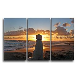 3 Piece Wall Art Painting Dog Watch In Sunset Pictures Print