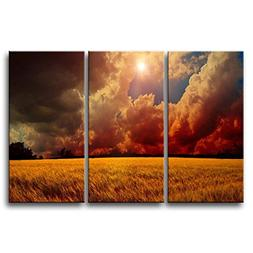So Crazy Art 3 Pieces Wall Art Painting Storm Clouds Over Wh